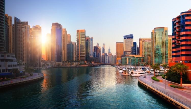 Real Estate Business Dubai