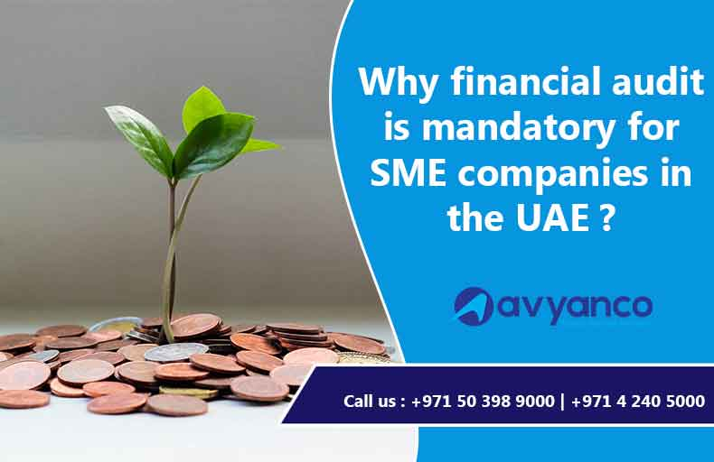 Financial Audit for SME Companies in UAE