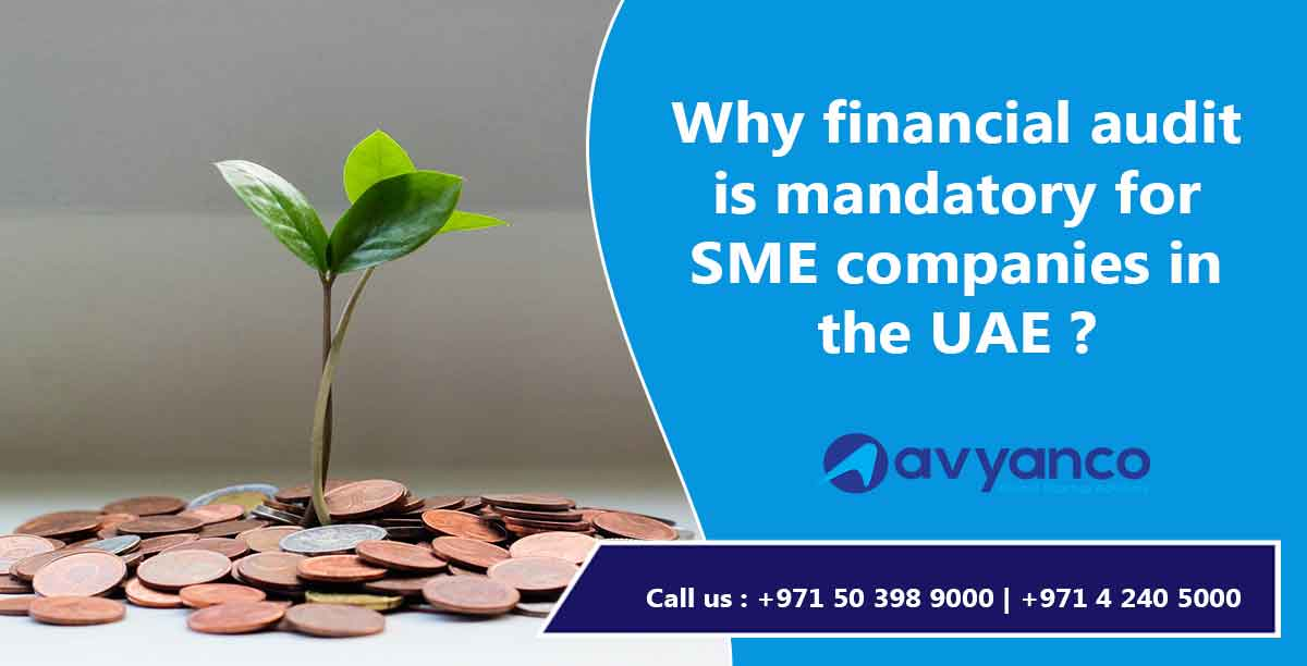 Financial Audit for SME Companies